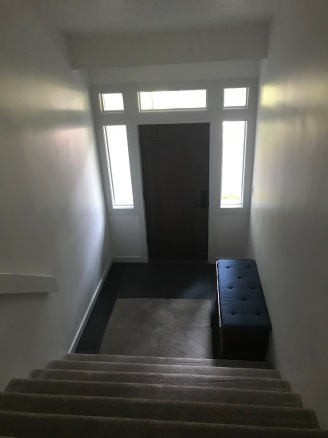 New front door and hallway